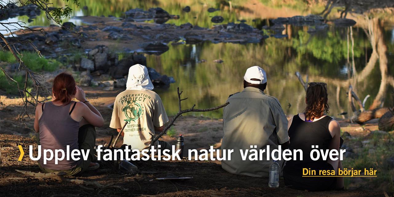 Upplev fantastisk natur världen över