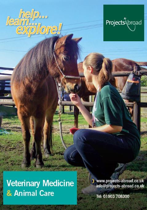 Projects Abroad Leaflet - Veterinär & djurvård