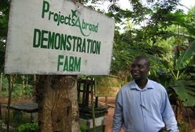 Volontär i Ghana : Jordbruk