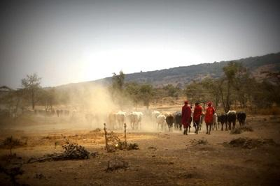 Volunteering with traditional maasai community in Tanzania