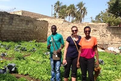 Volunteer on the Microfinance project in Senegal works with local villagers