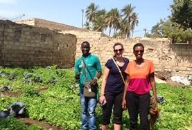 Volontär i Senegal : Mikrofinansiering