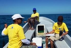 Volontärarbeta med Natur & Miljö : Belize