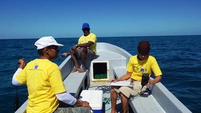 Volontärer arbetar med insamling av data till havs, tillsammans med partnerorganisation SEA