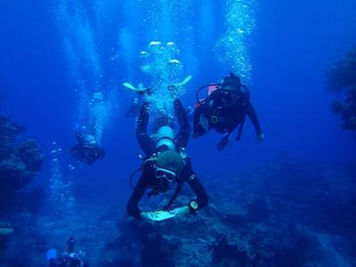 Volunteers on the Divemaster Course Add-On