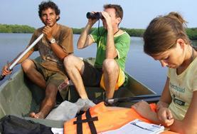 Volontärarbeta med Natur & Miljö : Mexiko