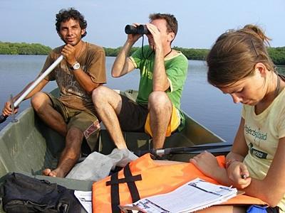 Volontärer vid naturvårdsprojekt i Mexiko studerar lagunens biologiska mångfald