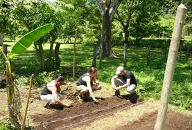Volontärarbeta med Natur & Miljö : Costa Rica