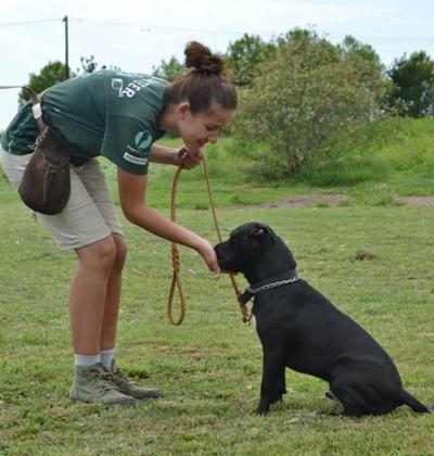 Volontär tillsammans med en utav hundarna vid hundterapi-projektet I Argentina