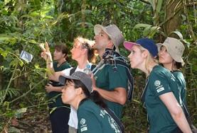 Volontär i Peru : Natur & Miljö