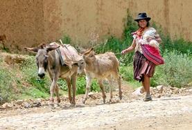 Volontärarbete i Bolivia : Språkkurs och språkresor