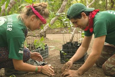 Projects Abroad volunteer plants a sapling with local staff member in the camping area of Barra Honda National Park, Costa Rica