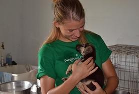 Volontär med djur utomlands : Belize