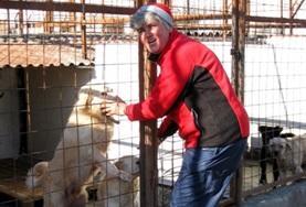 Volontär med djur utomlands : Rumänien