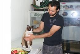 Volontär med djur utomlands : Mexiko
